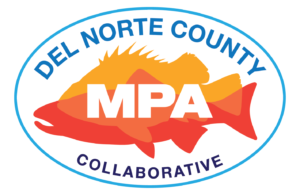 Del Norte Collaborative logo