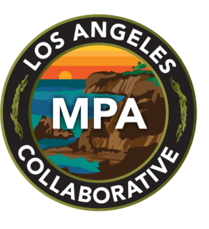 LA MPA Collaborative lgo