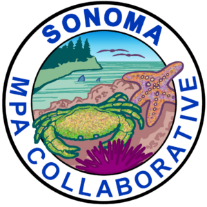 Sonoma Collaborative logo