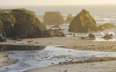 Join us! North Coast MPA Community Gatherings, November 1-3