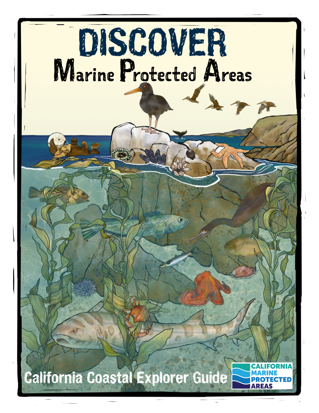 Discover Marine Protected Areas – California Coastal Explorer Guide