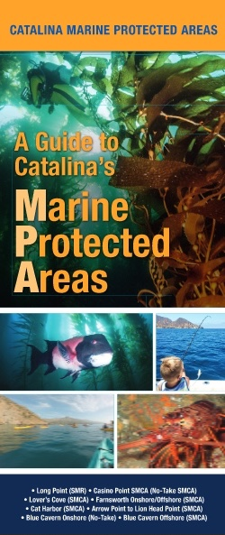 Cover of Catalina's MPAs Fishing Guide