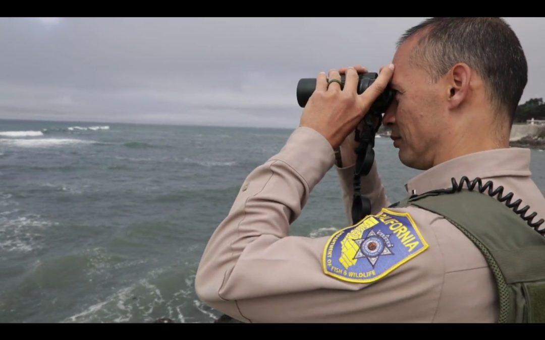 San Mateo: Montara State Marine Reserve