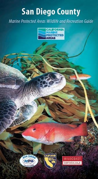 San Diego MPAs Wildlife and Recreation Brochure