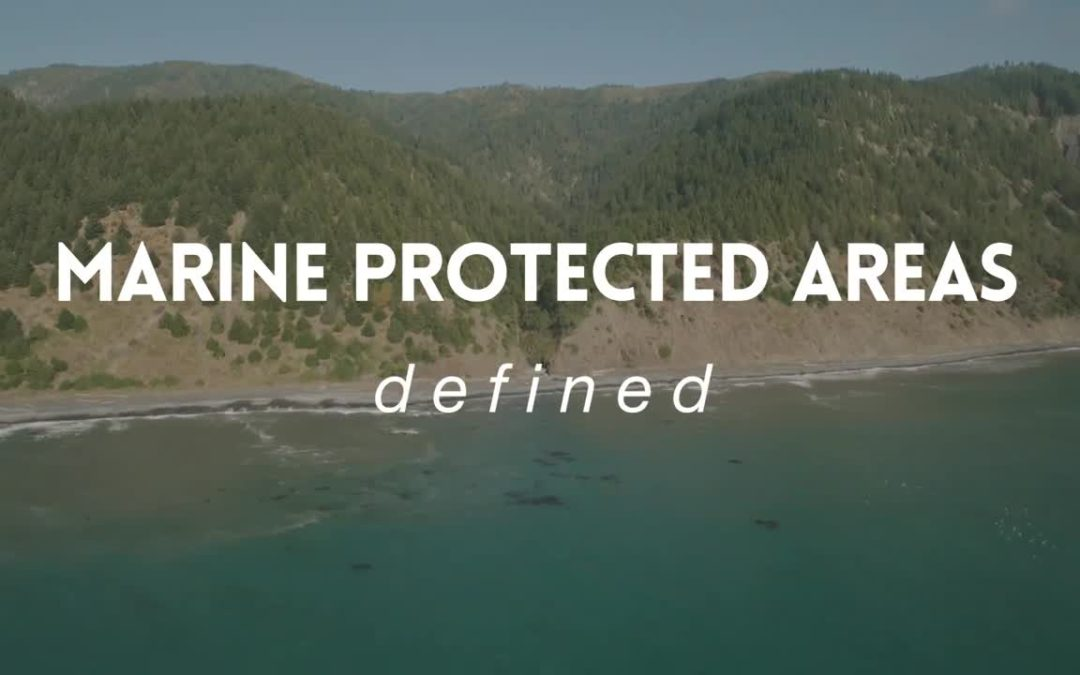 Humboldt/Del Norte: Marine Protected Area Science