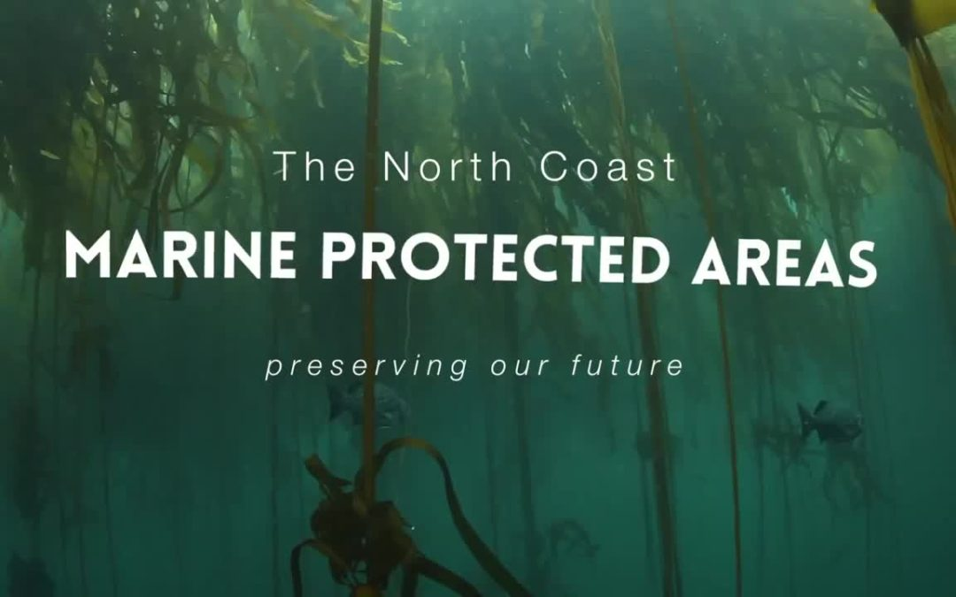 Humboldt/Del Norte: Marine Protected Areas – Youth Oriented