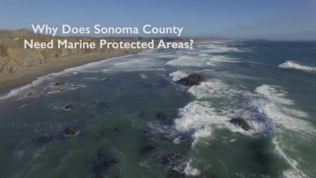 Sonoma: Marine Protected Areas PSA