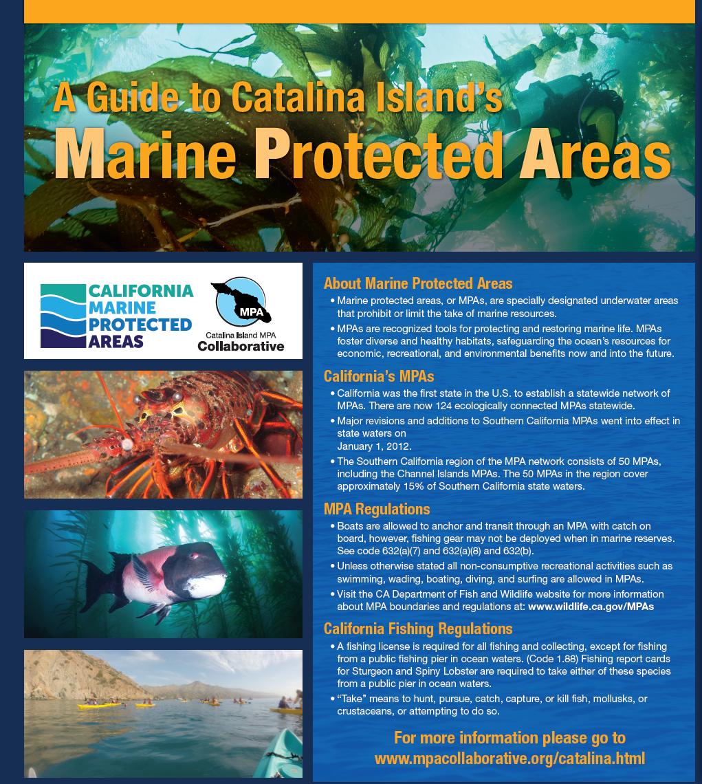 Catalina Island MPA Poster