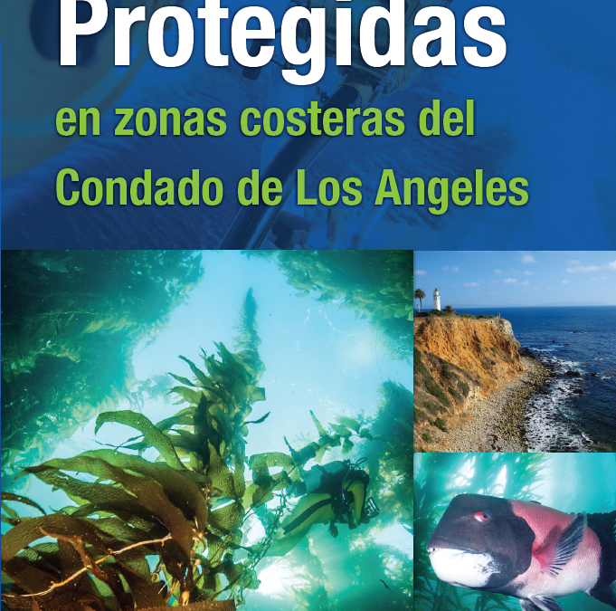 LA County MPAs Brochure (Spanish)
