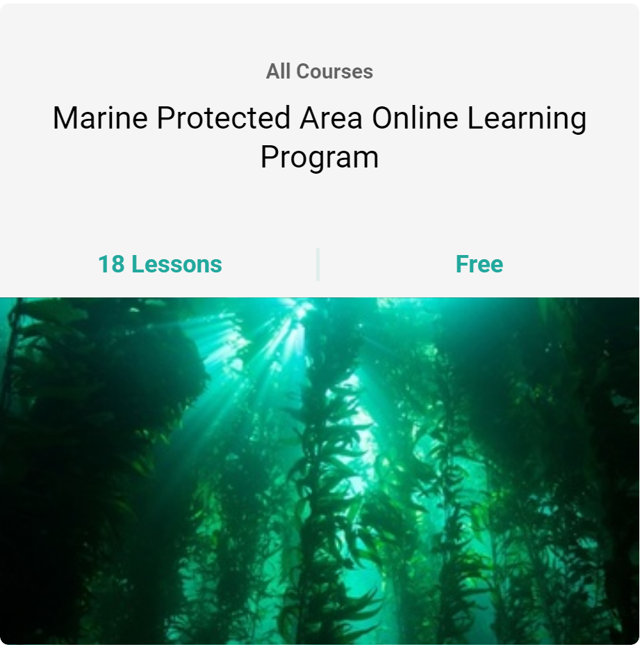 Review of North Coast Online MPA Training Module