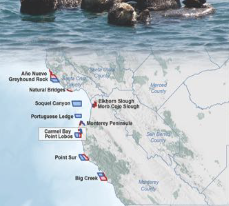 Point Lobos MPAs Brochure