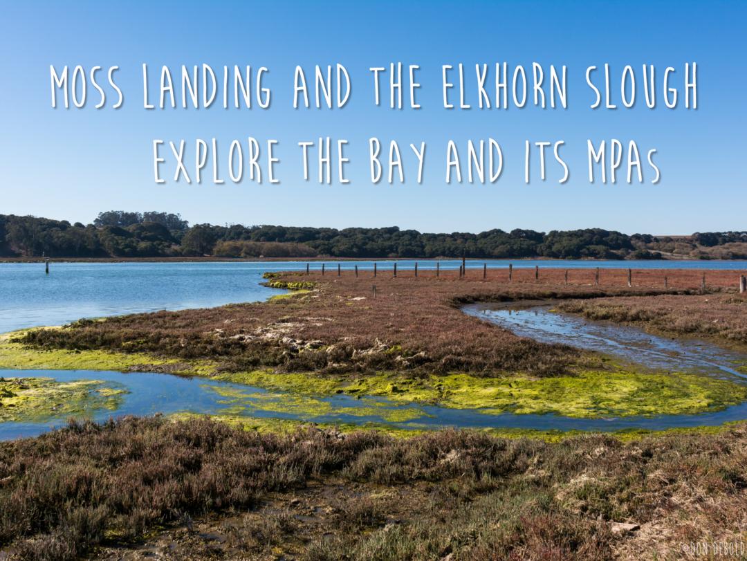 Moss Landing and Elkhorn Slough MPA Guidebook