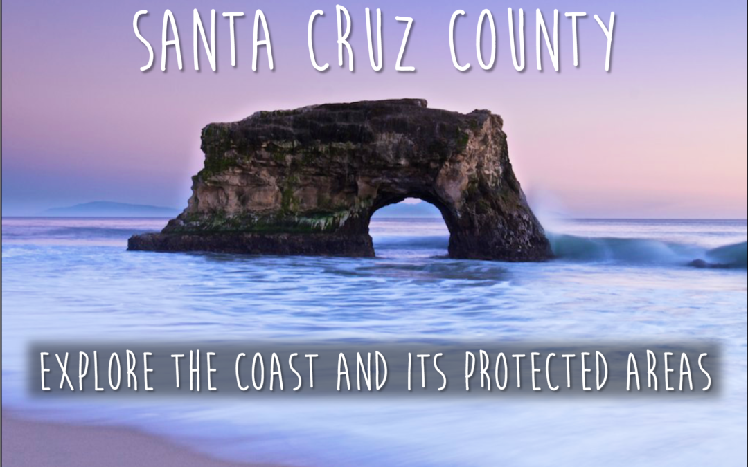 Santa Cruz Ocean Recreation Guide