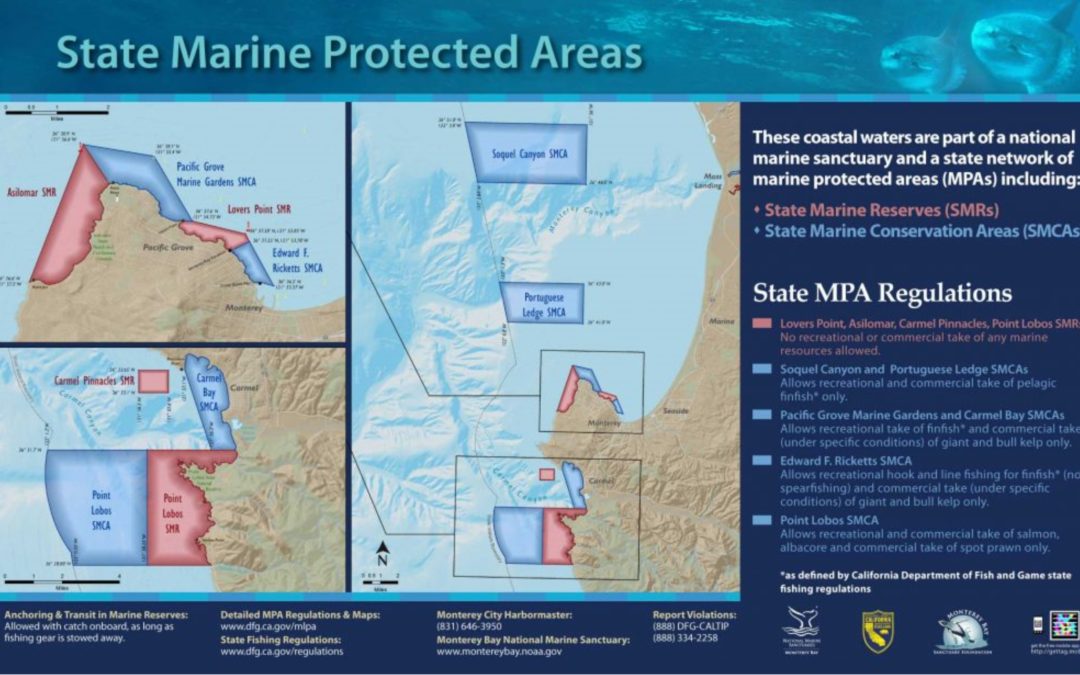 Monterey Harbor State MPAs Sign
