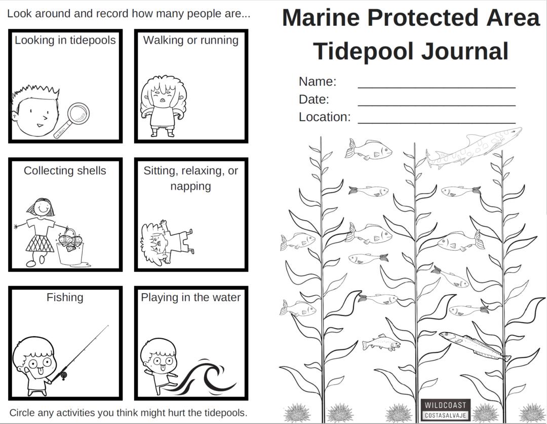 MPA Tidepool Journal