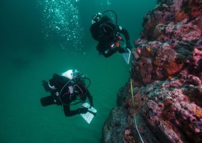 Applying a Climate Change Lens to California's MPA Network