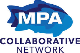 MPA Compliance Initiative: 2020 Wrap-Up