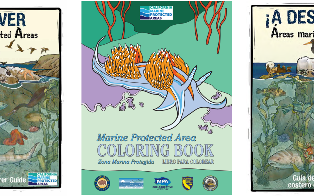 Blending Tradition and Tech – A Monterey and San Luis Obispo MPA Collaborative Project