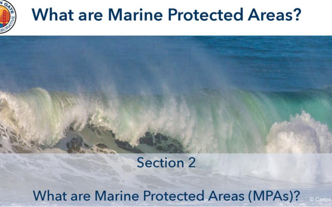 MPA Training Modules for Awareness and Compliance – A Golden Gate MPA Collaborative Project