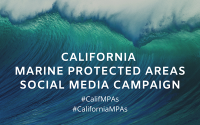 The California Marine Sanctuary Foundation provides and update on outreach efforts