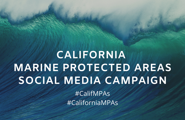 California Marine Sanctuary Foundation releases fifth content packet for the MPA Social Media Campaign