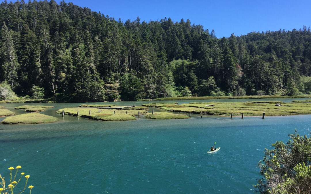 Exploring California's Marine Protected Areas: Big River Estuary State Marine ConservationArea