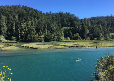 Exploring California's Marine Protected Areas: Big River Estuary State Marine Conservation Area