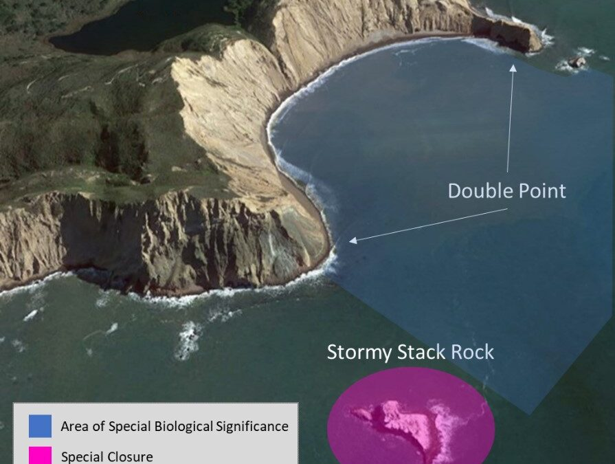 Exploring California's Marine Protected Areas: Double Point/Stormy Stack Rock SpecialClosure