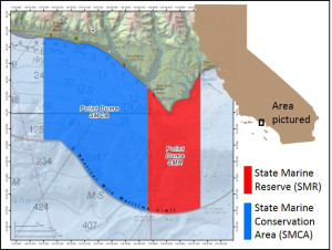 Exploring California's Marine Protected Areas: Point Dume State Marine Reserve and Point Dume State Marine Conservation Area