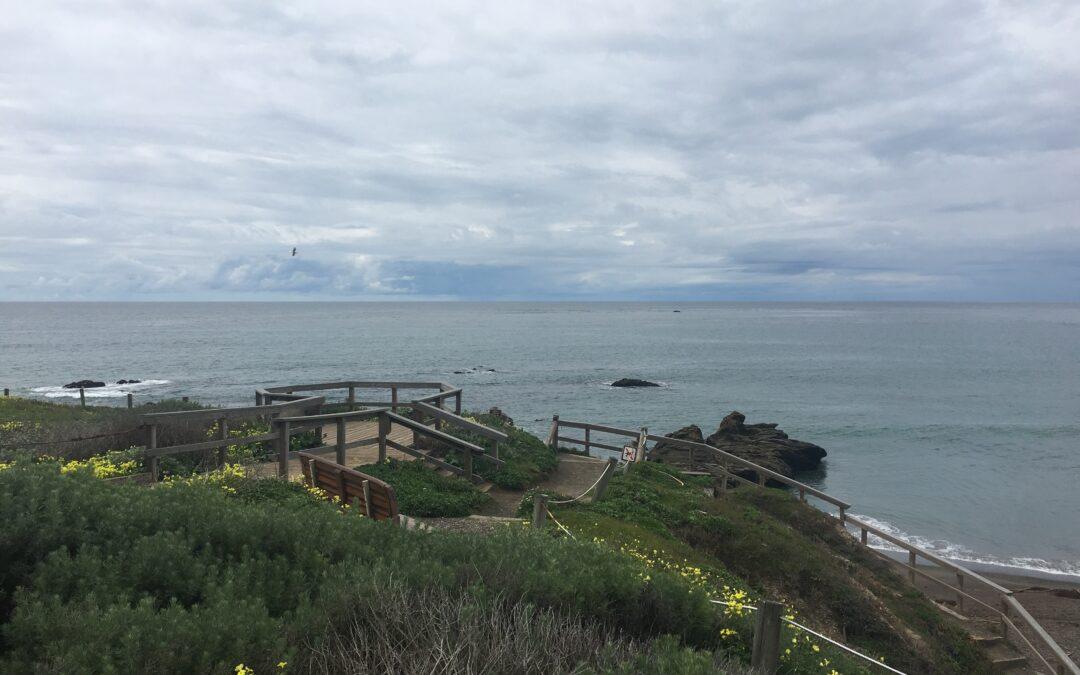 Exploring California's Marine Protected Areas: Cambria State Marine ConservationArea