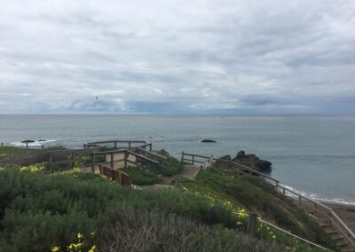 Exploring California's Marine Protected Areas: Cambria State Marine Conservation Area