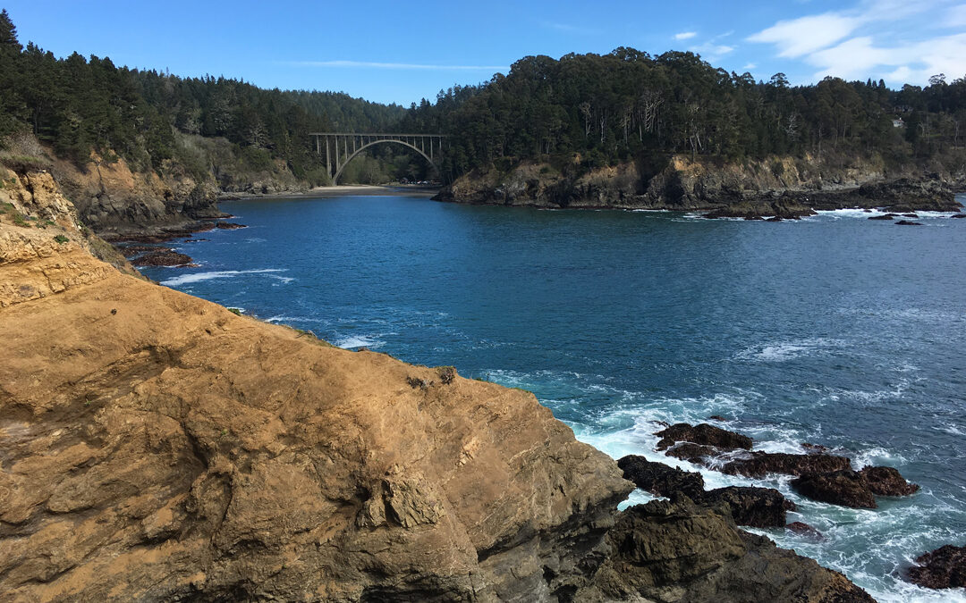 Exploring California's Marine Protected Areas: Russian Gulch State Marine ConservationArea