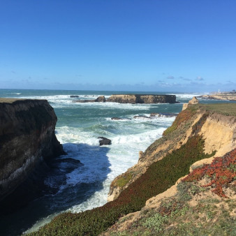 Exploring California's Marine Protected Areas: Sea Lion Cove State Marine Conservation Area