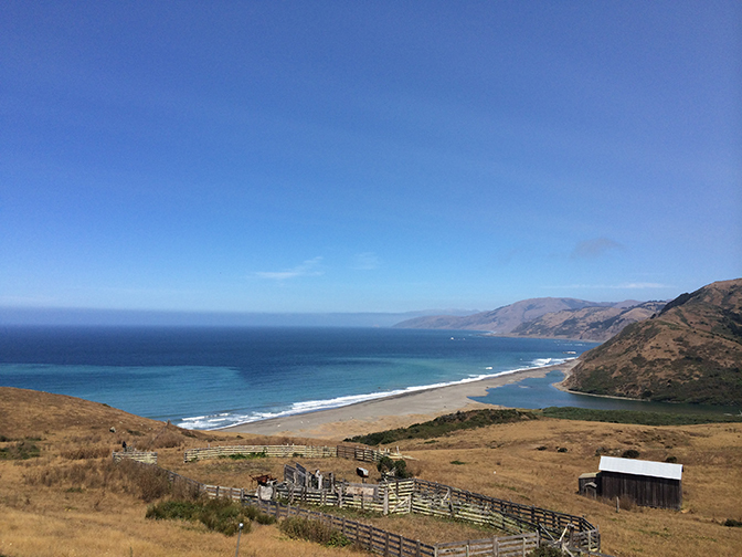 Exploring California's Marine Protected Areas: Sea Lion Gulch State Marine Reserve