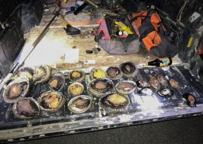 CDFW Wildlife Officer Works with Multiple Agencies to Stop Suspected Abalone Poachers in the Act