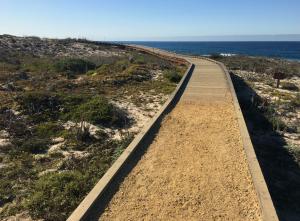 Exploring California's Marine Protected Areas: Asilomar State Marine Reserve