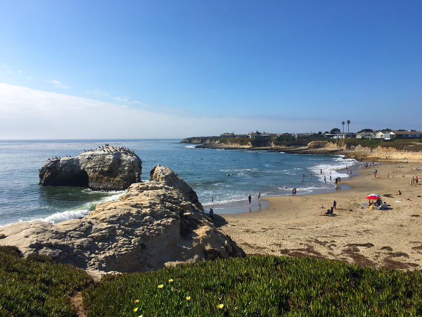 The Santa Cruz Marine Protected Area Collaborative: Partnering with Parks and More