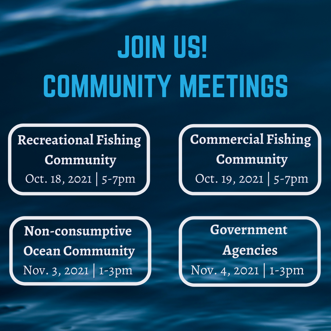 Get Involved: MPA Decadal Management Review