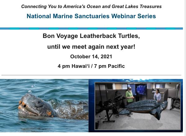 National Marine Sanctuaries Webinar: Bon Voyage Leatherback Turtles, until we meet again next year!